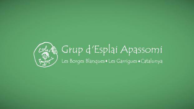 Página Web: <a href='https://apassomi.org/' target='_blank'>Associació Grup d'Esplai Apassomi</a>