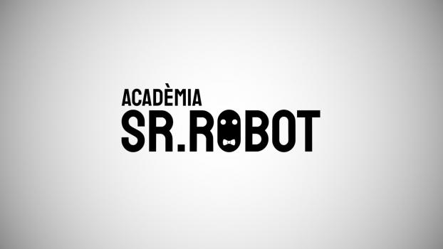 Página Web: <a href='https://srrobot.cat/' target='_blank'>Academia Sr.Robot</a>
